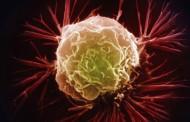 پزشکی نانو: نارنجک میکروسکوپی سلولهای سرطانی را هدف میگیرد