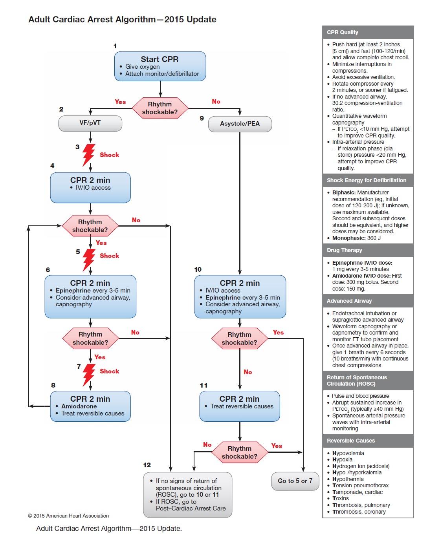 الگوریتم احیای پیشرفته بالغین براساس پروتکل 2015 انجمن قلب آمریکا
