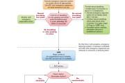 الگوریتم احیای پایه بالغین براساس پروتکل 2015 انجمن قلب آمریکا