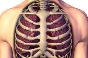 آه کشیدن  نقشی مهم در حفظ ظرفیت تنفسی دارد