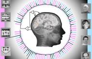 دانشمندان به زودی میتوانند تصورات درون مغز ما را پیشگویی کنند