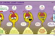 بیماری مزمن کلیوی و مراحل آن