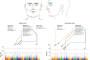 آیا می توان با تغییر ژن ها، شکل بینی نوزادان را در آینده تغییر داد؟