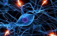 امیدی تازه برای بیماران مبتلا به ALS: ایمپلنت مغزی
